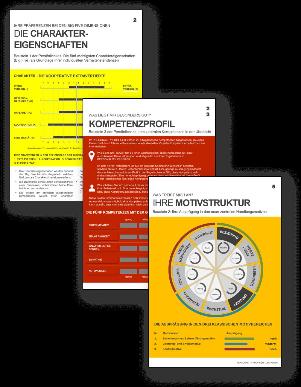 LINC Personality Profiler Kompetenz